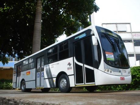 b1252-miniatura-do-valdeson-de-goiania